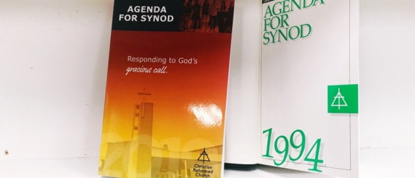 Back to the Future! Safe Church at Synod 1994 and 2019 | The Network