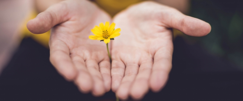 girl cupping hands around yellow flower
