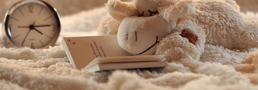 a child's stuffed lamb, book and clock sit on a fuzzy white blanket